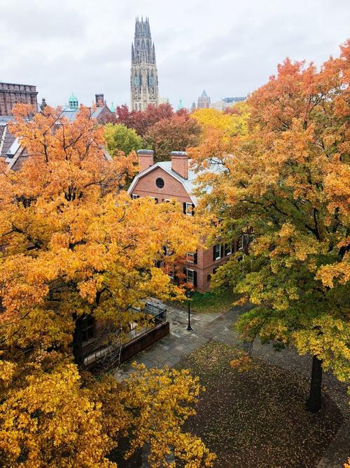 Harkness in the Fall
