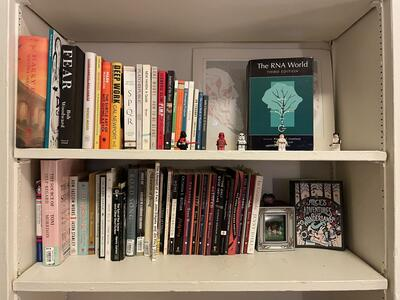 bookshelf of books