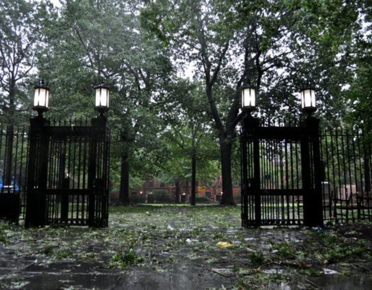 The gates to Calhoun Residential College and a courtyard strewn with fallen branches.