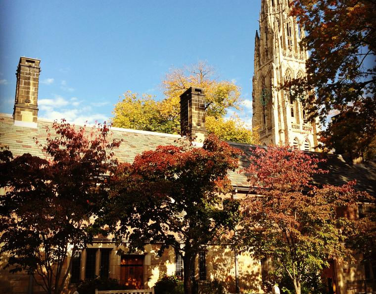 The Yale campus in autumn.