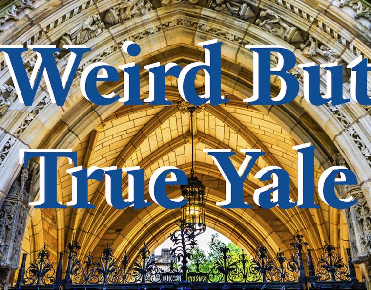 Weird but True Yale