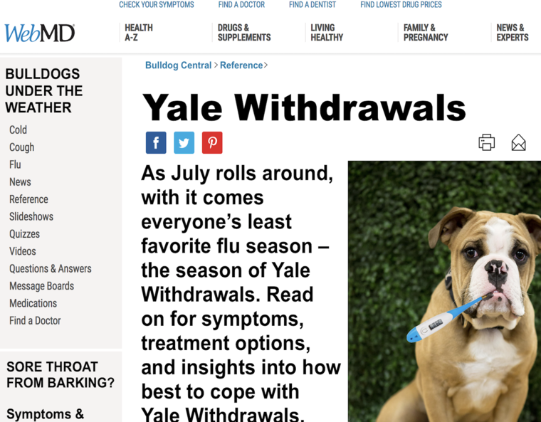 10 Signs that you may be Experiencing Yale Withdrawal | Yale