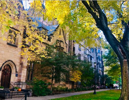 Yale Campus