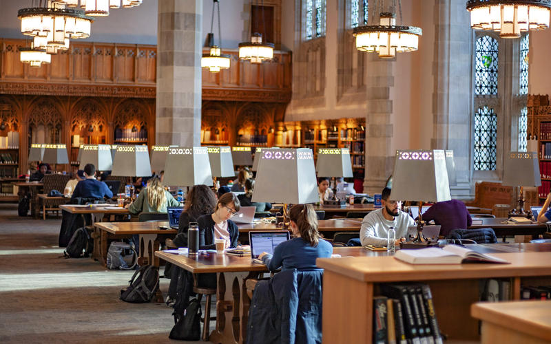 Students study in the reading room of Sterling Library