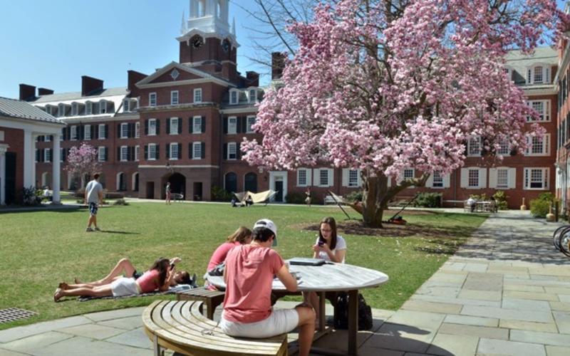 Students enjoying spring weather in the Timothy Dwight College courtyard.