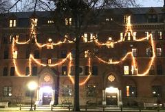 Moose lights during Christmas!