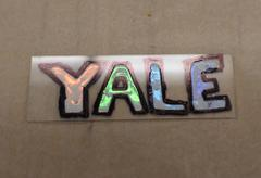 """""""YALE"""", written in a colorful substance resembling paint."""