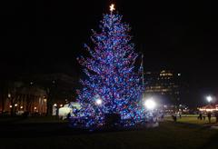 An enormous Christmas tree brightens the New Haven Green at night.