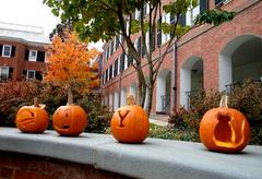 A row of carved pumpkins.