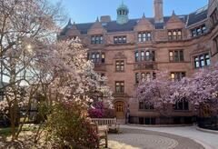 Vanderbilt Hall and pink blossom trees in the springs