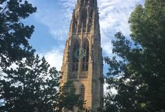 A view of Harkness Tower enclusterd by trees