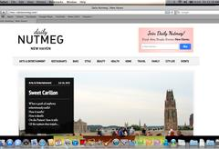 """The """"Daily Nutmeg"""" homepage."""