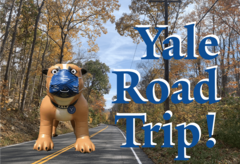 Fall road and inflatable bulldog